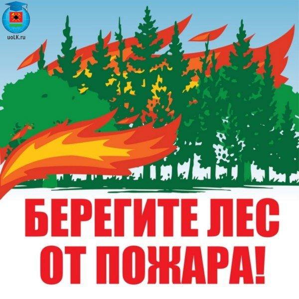 Акция «Берегите лес от пожаров!»